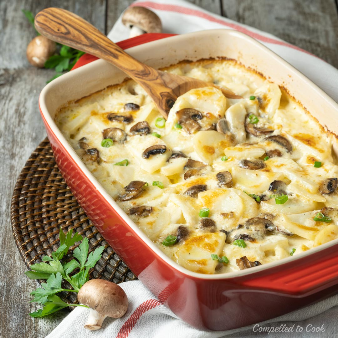 Potato and Mushroom Gratin baked golden in a red casserole dish and garnished with chopped green onions.